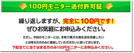 モグニャン100円モニター
